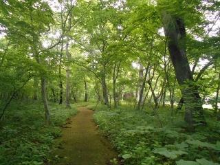 Aoba200619