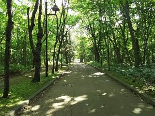 Aoba200729
